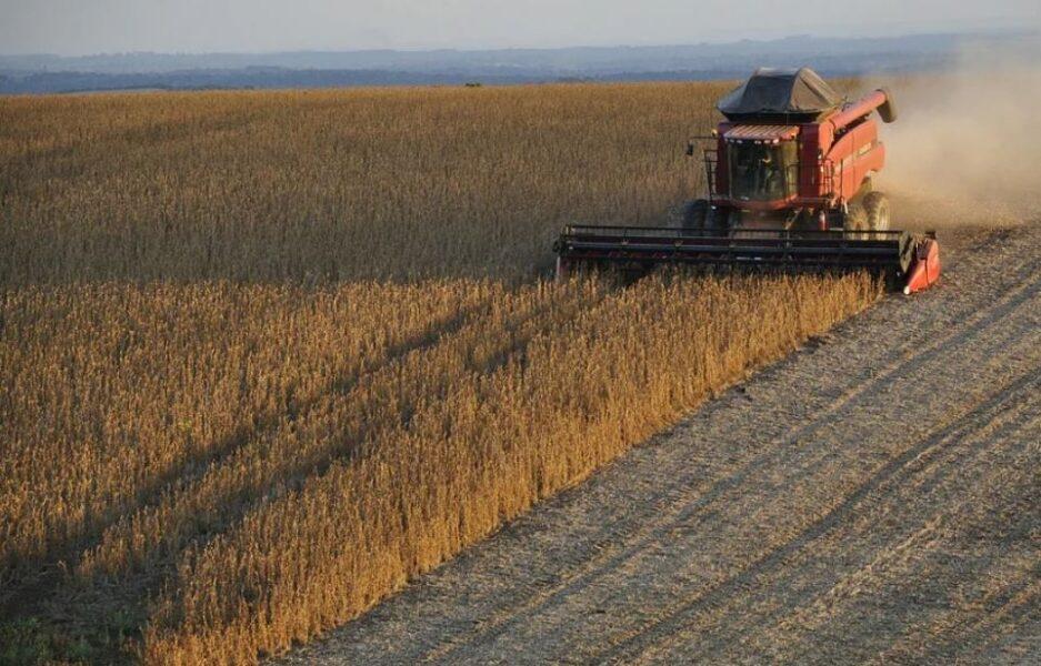 Paraná ajusta projeção de safra de soja 2020/21 para baixo a 20,34 mi t