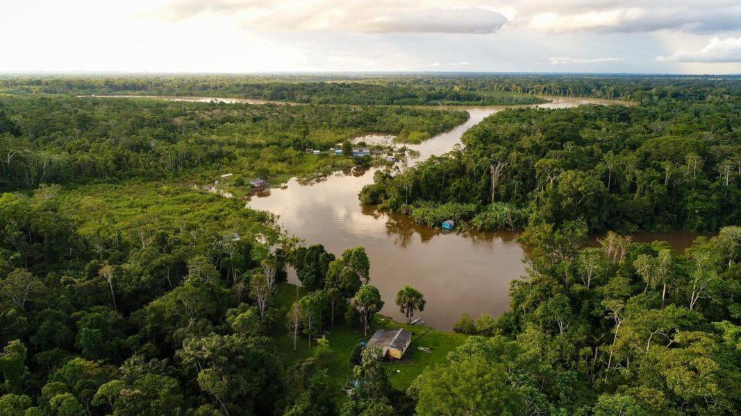 Como a tecnologia pode ajudar a salvar a Amazônia