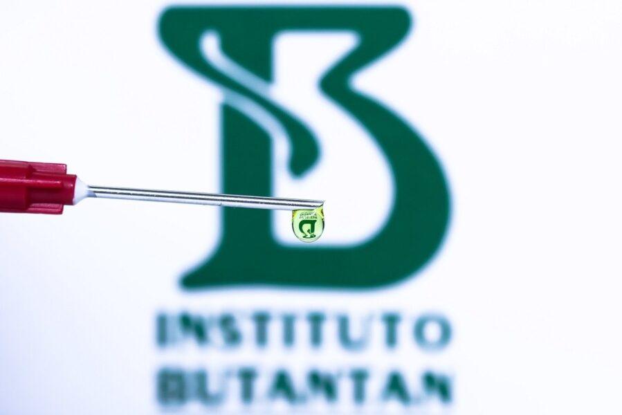 Butanvac: Instituto Butantan pedirá a Anvisa autorização para testar vacina própria contra Covid-19