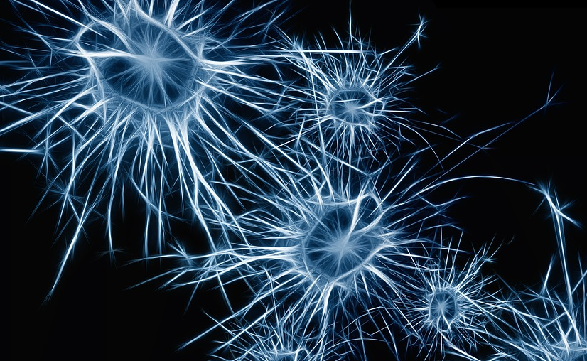 Neurocirurgia pode beneficiar pacientes com epilepsia que não respondem aos medicamentos