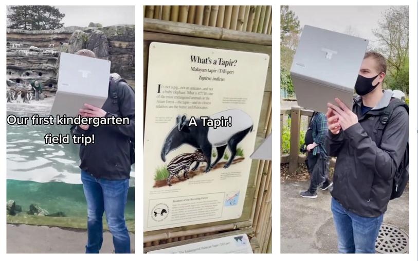 Professor viraliza com excursão virtual do jardim de infância ao zoológico
