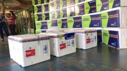 Paraná recebe novo lote e se aproxima de um milhão de doses da vacina contra Covid-19