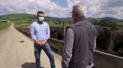 Produção de carne integrada com grãos | RALLY DE PRODUTIVIDADE
