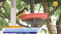 Paraná no Ar Ao Vivo | Assista à íntegra de hoje 15/04/2021