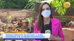 Luta contra o mosquito: Pato Bragado decreta epidemia de dengue
