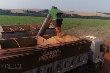 A importância da conectividade na Agricultura de Precisão