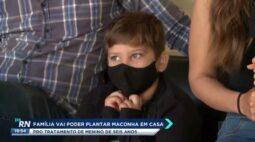 Família vai poder plantar maconha em casa para tratamento de menino de 6 anos