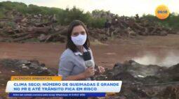Incêndios ambientais: clima seco favorece aumento de queimadas
