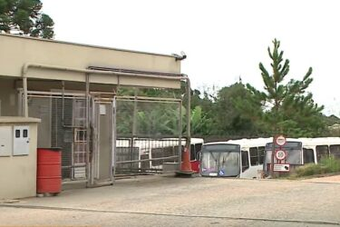 Justiça determina volta do transporte público em São José dos Pinhais, mas funcionários seguem parados