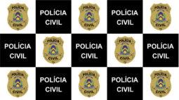 Qual a função da Polícia Civil?