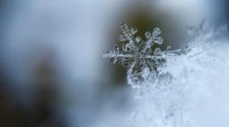 Primeira temperatura negativa do ano é registrada na região Sul; confira!
