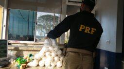 Duas mulheres são presas com cocaína no Paraná; criança de 2 anos estava junto no carro
