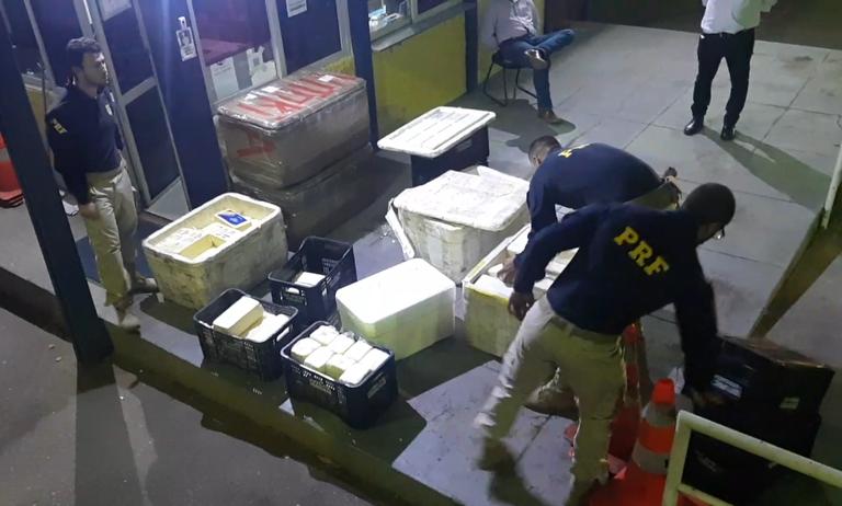 Quase meia tonelada de queijo é apreendida, em Goiás