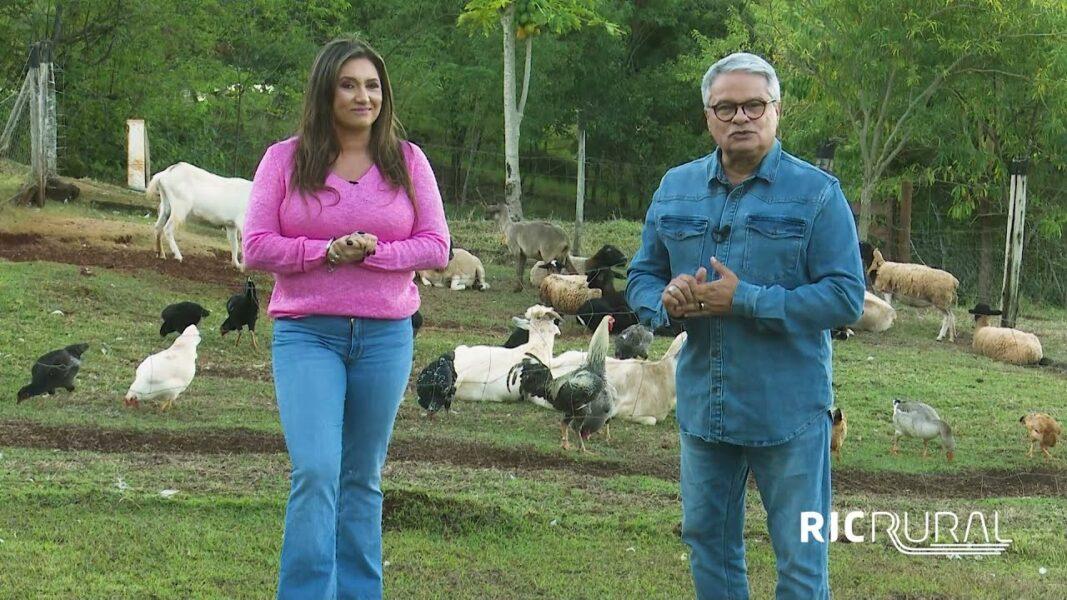 Confira os destaques do RIC Rural de domingo (16 de maio)