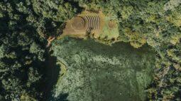 Vereadores de Curitiba votam atualização da lei de proteção ao meio ambiente
