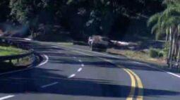 Motorista pula de caminhão em movimento antes de grave acidente em Pato Branco; assista