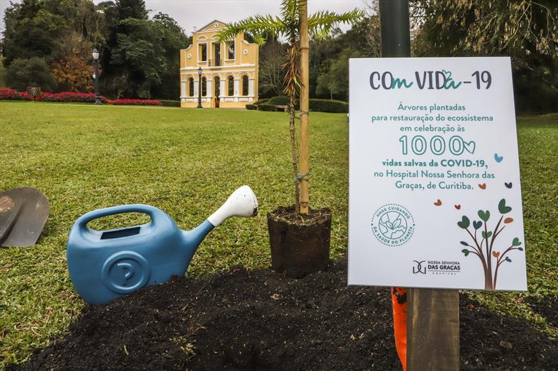 Prefeito de Curitiba e ex-governador plantam árvores para celebrar sobreviventes da Covid-19