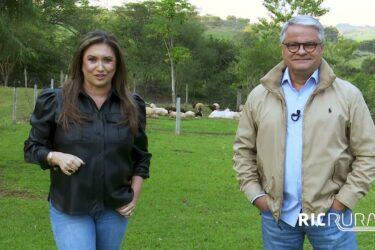 Confira os destaques do RIC Rural de domingo (20 de junho)