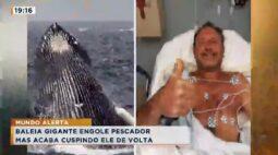 Baleia gigante engole pescador mas acaba cuspindo ele de volta