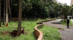 Bosque central de Londrina fica parcialmente sem iluminação depois de furto