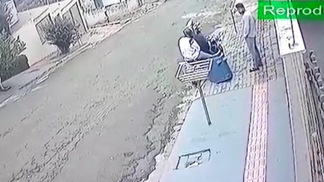Casinha de cachorro furtada é devolvida um dia após o crime, em Londrina