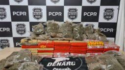 Rota da droga: no Oeste, mais de 3 ton de maconha foram apreendidas nos últimos dias
