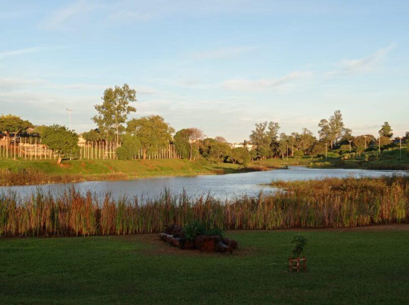 lago zona norte londrina