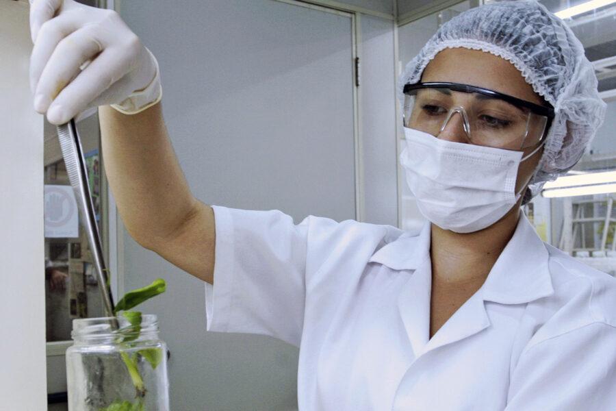 UEM é a instituição que mais tem pesquisadoras mulheres nas Américas
