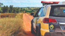 Jovem é encontrado nu e ferido em canavial no Paraná