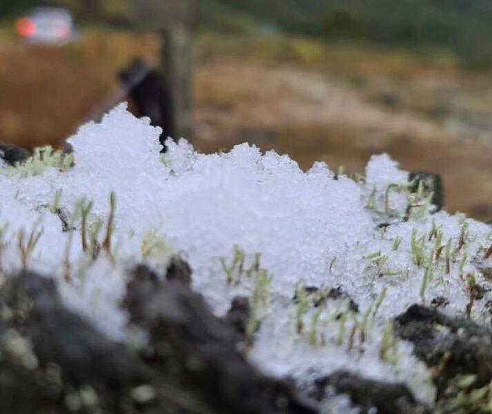 Santa Catarina registra primeira neve do ano