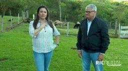 Confira os destaques do RIC Rural de domingo (25 de julho)