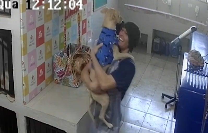 Vídeo de funcionário de pet shop no Paraná dançando com cachorra viraliza nas redes