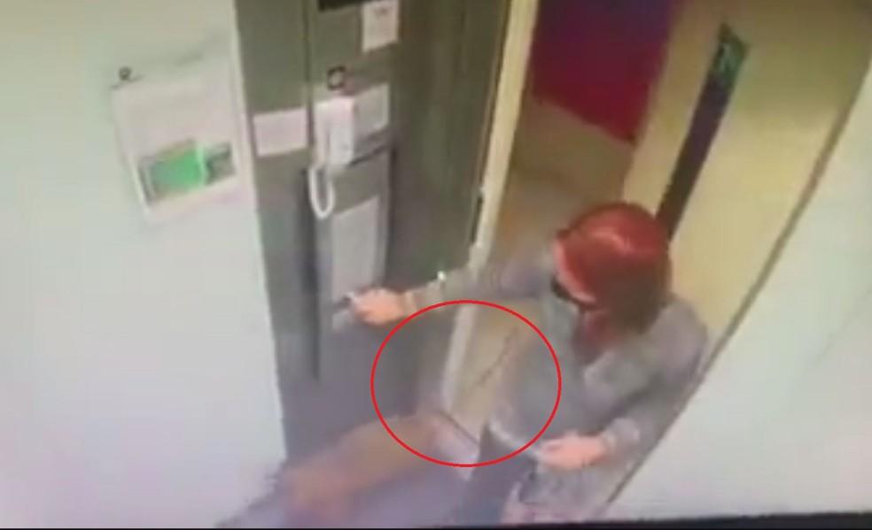 Vídeo: cachorro fica preso na porta do elevador em movimento