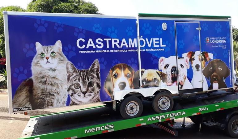 Saiba como funciona o Castramóvel de Londrina e o que fazer para conseguir inscrever seu pet