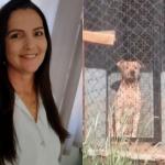Mulher morre após sofrer ataque de seis pit-bulls em Birigui (SP)