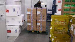 Novas doses da Pfizer são distribuídas pelo PR; saiba quantas cada regional receberá