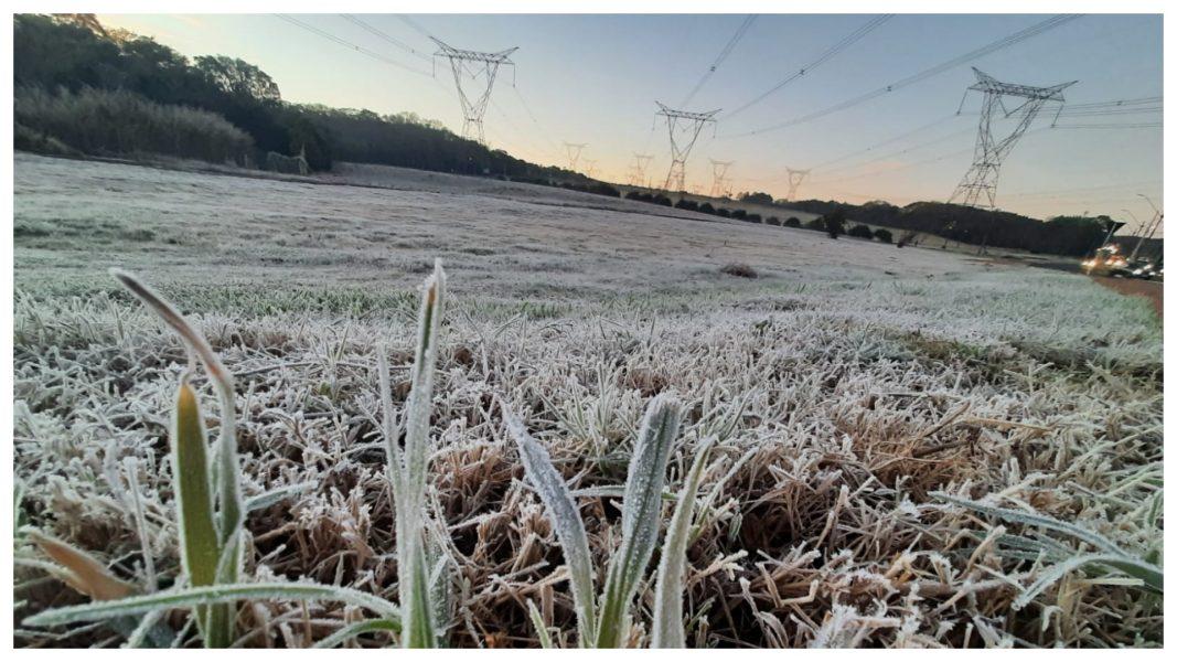 No Oeste, geada modifica cenário e deixa campos e plantações cobertos de gelo