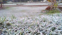 Frio no Paraná: Termômetros chegam a -5,2ºC; veja lista de cidades mais geladas