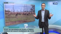 Dono de propriedade rural é preso animais estariam morrendo de fome