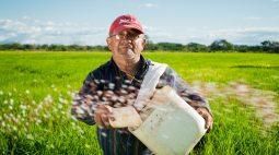 Agricultura e animais: o que a Lei nos diz?