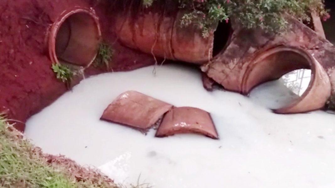 Mancha no Lago Igapó II chama atenção e água passa pro testes