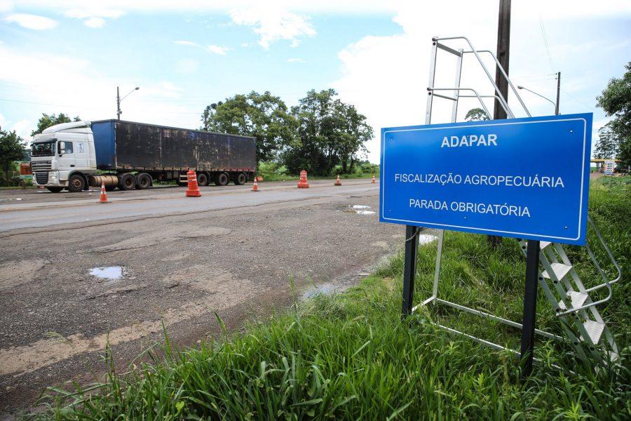 Concurso da Adapar: nova data da prova é 12 de setembro de 2021