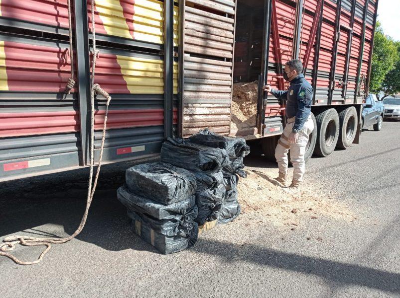 Três toneladas de maconha são encontradas em carga de caminhão na BR-369, em Cambé