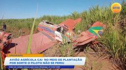 Avião agrícola cai no meio de plantação e por sorte o piloto não se feriu