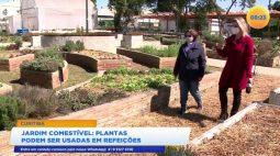 Jardim comestível oferece plantas que podem ser usadas em refeições