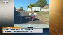 Rapaz é flagrado no Centro de Cornélio furtando uma placa