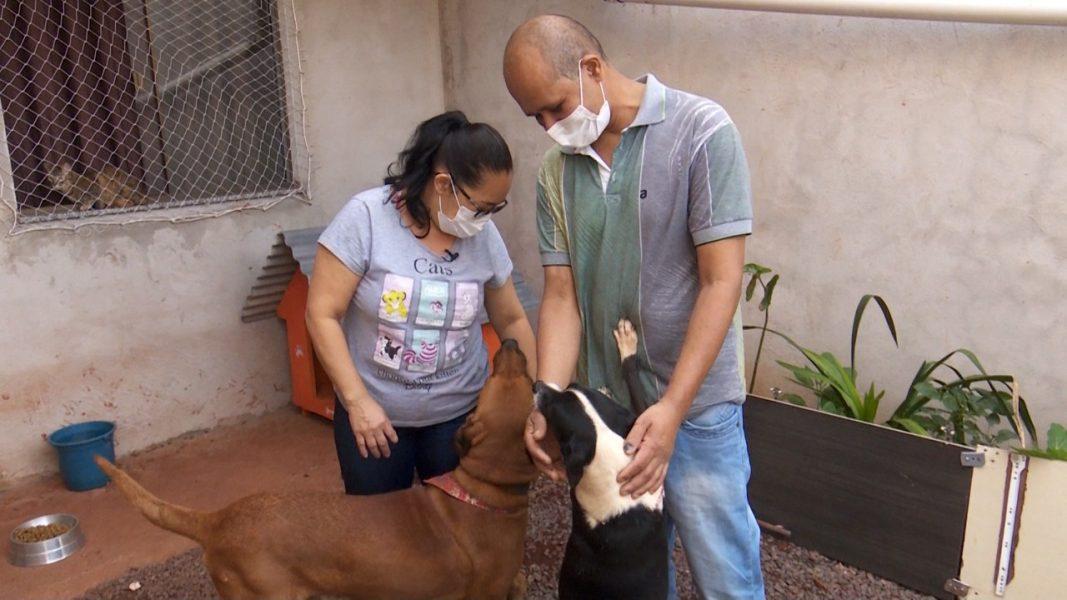 Casal guarda dinheiro por dois anos para trazer animais de estimação da Bahia para o Paraná