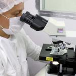 Paraná registra mais 2.101 casos de Covid-19 e 17 mortes pela doença no último boletim