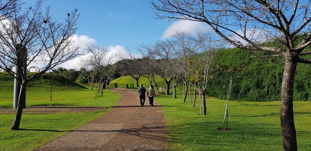 Frio intenso deixa o Paraná e semana deve ter temperaturas mais agradáveis; veja as previsões