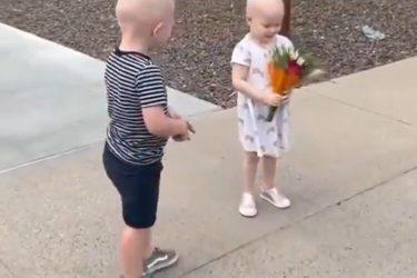 Crianças se reencontram após ficarem amigas durante tratamento contra o câncer; assista